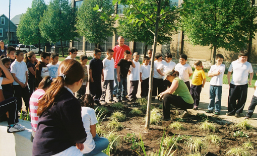 Green Schoolyards For Healthy Students: A New Chicago Initiative