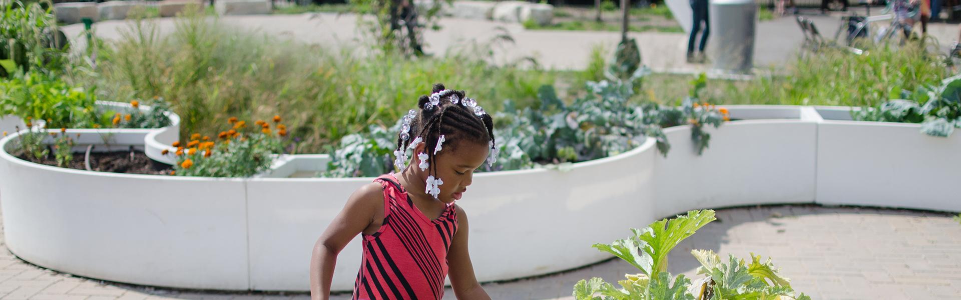 School Gardens 101